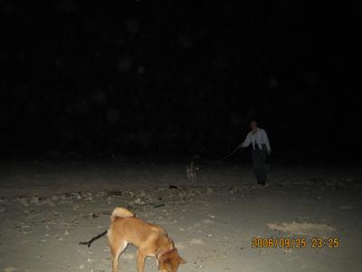 暗闇の砂浜で
