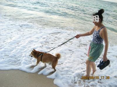 波打ち際を歩く健太郎