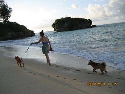 海の別荘プライベートビーチにて