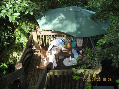 カフェ風樹の外テーブル席