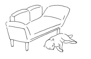 ソファの横