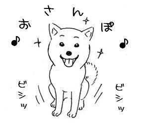 散歩催促(秋)