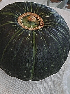 pumpkin~01.jpg
