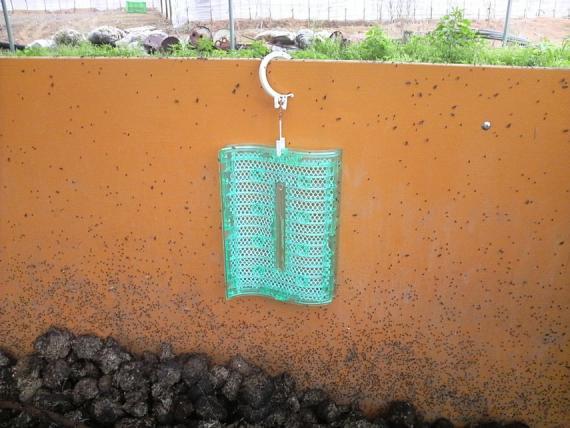 堆肥置場12