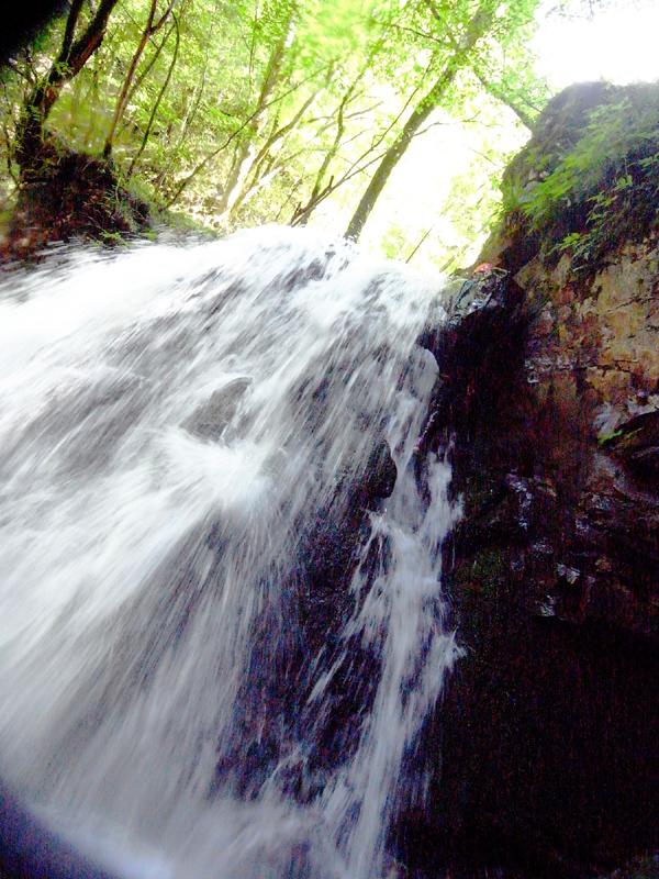 2010_0903_12.jpg