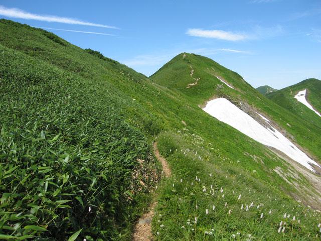烏帽子岳へ続く道