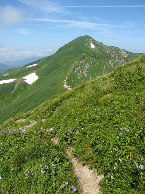 楽しい山歩き