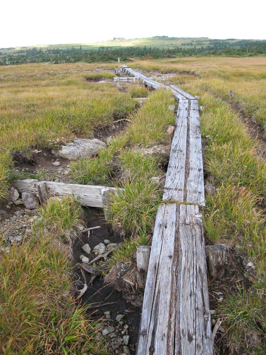 古びた木道