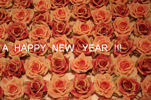 A  HAPPY  NEW  YEAR !!!