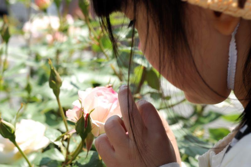 NIKON D70_20100516-028