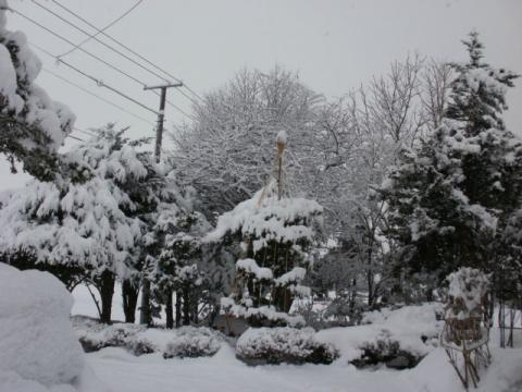 大雪 021
