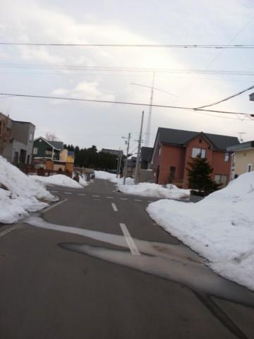 ココ 夕方散歩 044