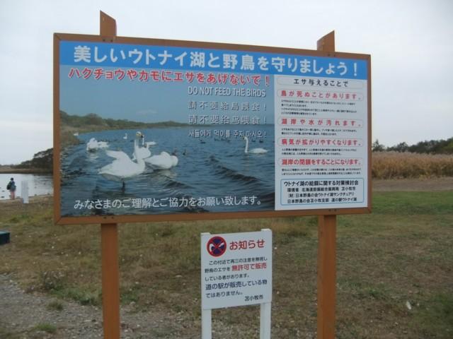 ウトナイ湖 002