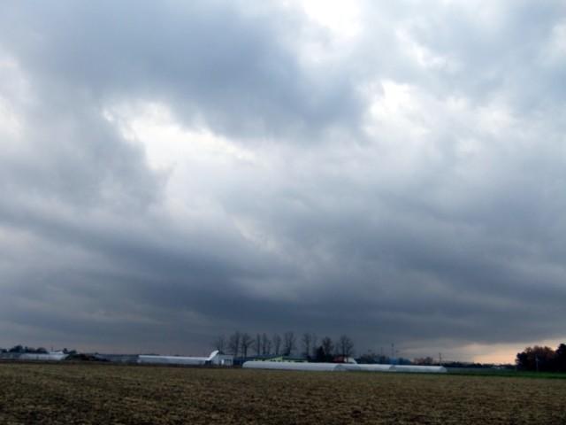 曇り日曜 006