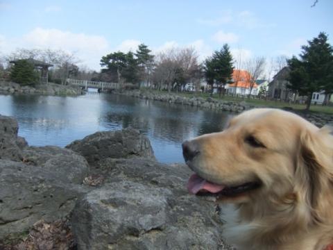 2011.5.5公園 041