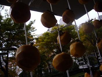 柿をつるす