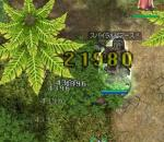 20051116033602.jpg