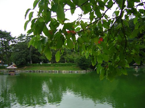 20040929ohori.jpg