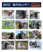 2012web.jpg