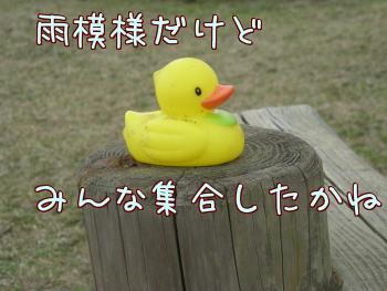 3Fjcp_7S.jpg