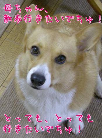 4_HE_s7N.jpg