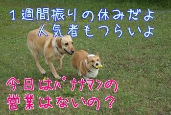 AuFLmXG_.jpg