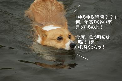 DSC01140.jpg