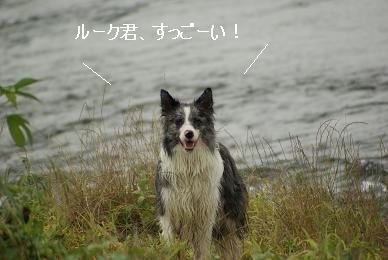DSC01478.jpg
