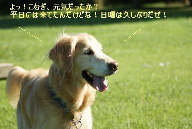 DSC01568.jpg