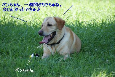 DSC01723.jpg
