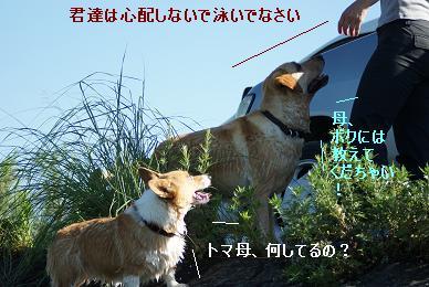 DSC01820.jpg