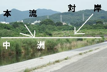 DSC05605.jpg