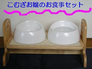 DSCN5126.jpg