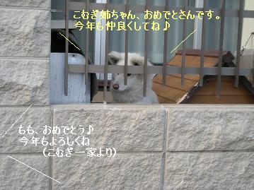 DSCN5308.jpg