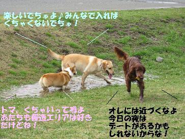 IMG_0734.jpg