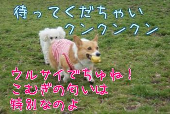 KFQ_mYNO.jpg