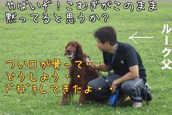 NAekzYXQ1.jpg