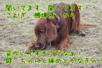 X2tejo_U.jpg