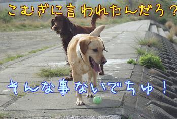 YcbhzNVg.jpg
