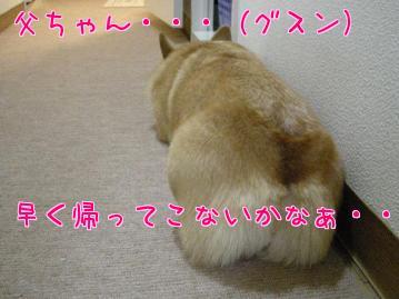 YpcqavBD.jpg