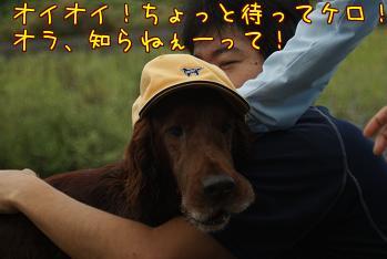 _xTmGej3.jpg