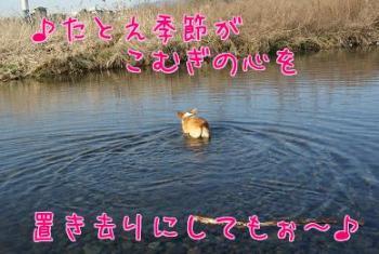 eh_qWF6C.jpg