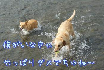 lC2tu4Ng.jpg