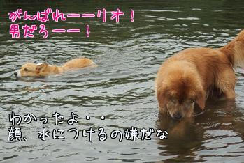 u46Of8YC.jpg