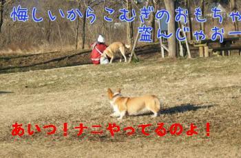 x4dHOQuf.jpg