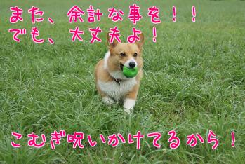 ybtQO0_8.jpg