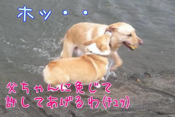 yyiScq7p.jpg