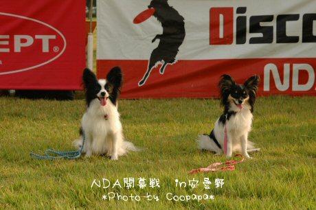 DSC_9552.jpg