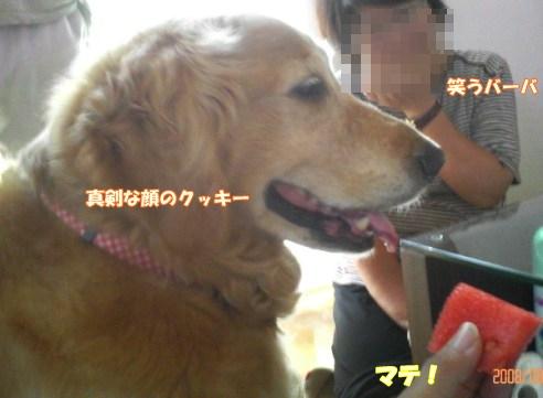 200808122.jpg