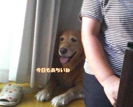 200808123.jpg